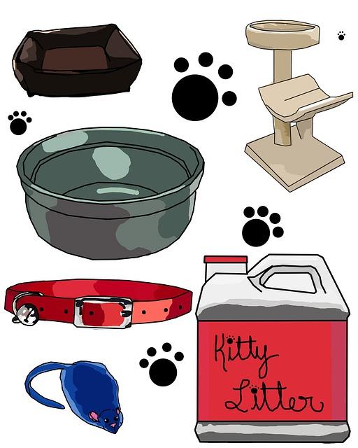 Kosten für die Katzen-Grundausstattung