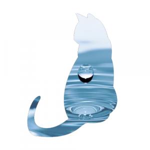 Welchen Wasserbedarf hat die Katze?
