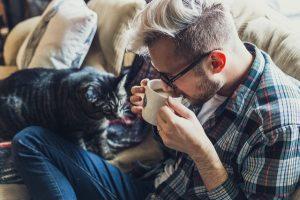 Katze sucht Kontakt zu ihrem Menschen