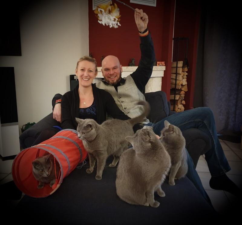 Wir sind Mang de Meren - Züchter der echten Kartäuser Katze